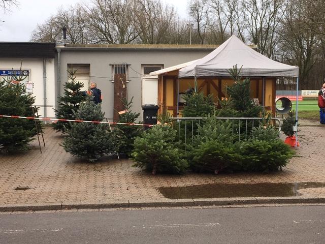 Großer Weihnachtsbaumverkauf 2019